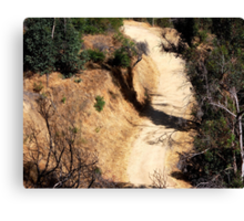 Road which will lead up (Griffith Park) Canvas Print