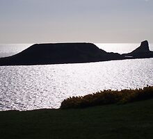 Worms Head by Neill Parker
