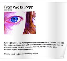 From Wild to Loopy Poster