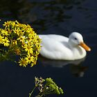 flower but supposed to be duck! by Thomas Scurr