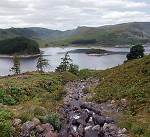 Haweswater by Thomas Banks