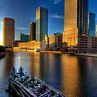 Tampa Cityscape Sunset_02 by Robert Azmitia