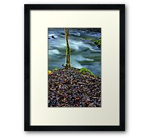 """""""On its Own"""" Framed Print"""