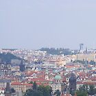 View of Prague by roggcar