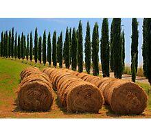 Tuscan Hay Photographic Print