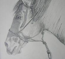 Cajun by Janet Rawlings