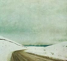 Snow Road by Jill Ferry