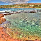 Tidepools at Hulopo'e Beach by Jessica Veltri