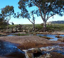 Hughes Creek - Victoria, Australia by Imagebydg