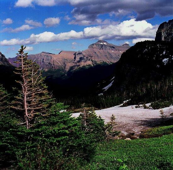 Logan's Pass, Glacier N.P., Montana by Rodney Johnson