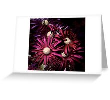 THE EVERLASTING GIFT ! Greeting Card