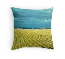 Drive By Fields Of Gold Throw Pillow