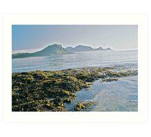 Lofots .My love Norway . Sea landscape. by Brown Sugar  . Views (329) favorited by (1) thanks friends ! Art Print