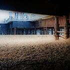 Under Brighton Pier by Karen Martin