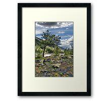 Kootenai River Drainage Framed Print