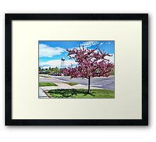 A Touch of Beauty Framed Print