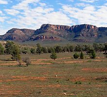 Flinders Ranges by John Vriesekolk