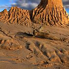 Mungo A Desert Landscape by Stephen Ruane