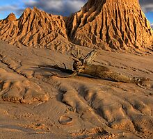 Mungo Formations by Stephen Ruane