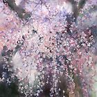 The droop cherry blossoms...youen by vasenoir