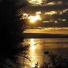 Sunset over Lake Taupo - New Zealand by Kim  Lambert