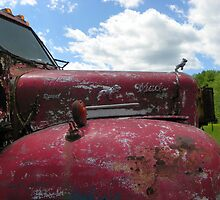 An Old Mack Truck by MaryinMaine