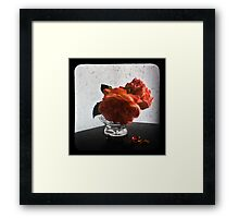 Fading glory Framed Print
