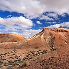 The Painted Hills. by trevorb
