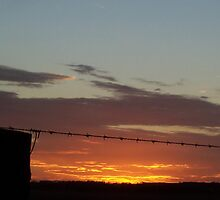 Sunset and wire by Cathy McAdie