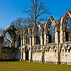 Ruins of St Mary&#x27;s Abbey  -  York #4 by Trevor Kersley