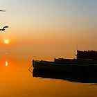 The Holy Ganga and the Sunrise by Mukesh Srivastava