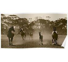 Herd of dust.. Poster