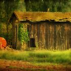 The Old Barn  by Irene  Burdell