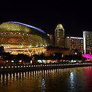 The Esplanade by Vivek Bakshi