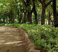 Quezon Memorial Circle pathway 21 by walterericsy