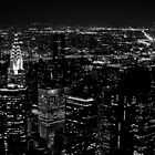 New York Skyline by NikonNoob