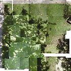 My garden kaledioscope by Goran Medjugorac
