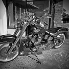 Harley - Its Black & White - HDR by clydeessex