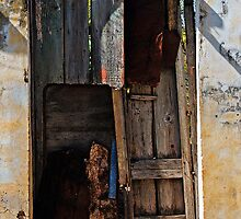 A gate of many colours, Trinidad, Cuba by buttonpresser