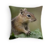 A Leafy Vegetable Snack Throw Pillow