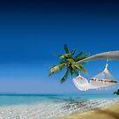 Beach hammocks in Bora Bora by Nasko .