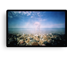 Searching Canvas Print
