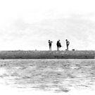 The Shell Seekers. by Lynne Haselden