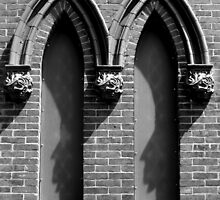 Windows in Wilmington by Sharksladie