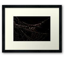 """Misty Web"" Framed Print"