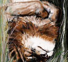CAT NAP by Ray Jackson