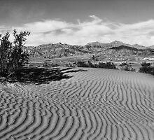 Death Valley Sands, California by Ann  Van Breemen