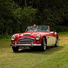 Big Healey by David J Knight