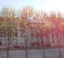 Parisian Terrace by babibell