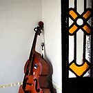 Double Bass in Valles Palace, Cienfuegos, Cuba by buttonpresser